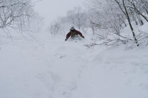 HERO Hakuba Japan ski